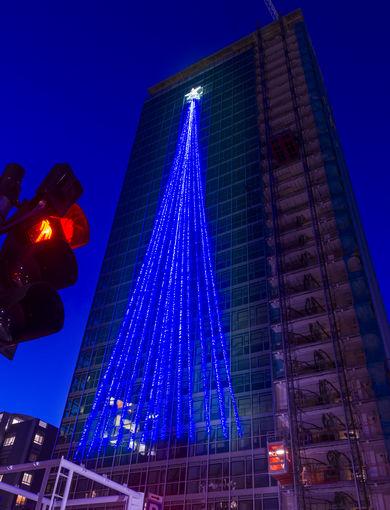 WAITING FOR MAGIC   TORRE GALFA CHRISTMAS TREE - 29/11/2018