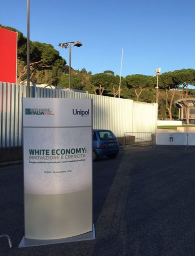 White Economy: innovation and growth.
